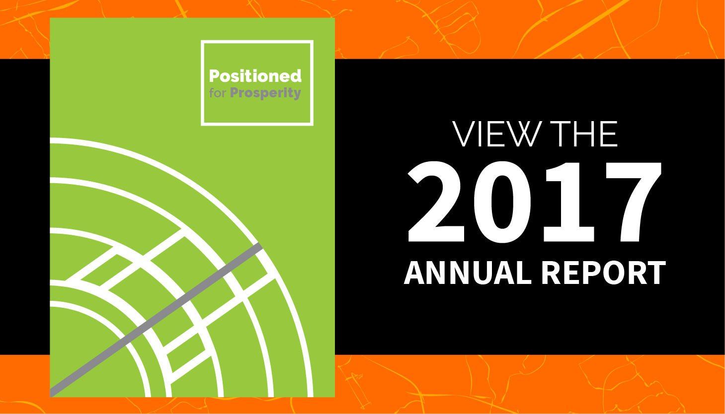 View the 2017 Annual Report
